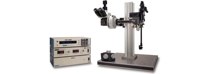 Sutter Instrument MOM thophoton microscope